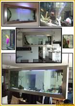 Aquarium suspendu tab2-600.jpg