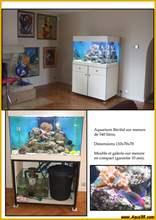 Aquarium eau de mer eaudemer26b.jpg