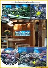 Aquarium eau de mer recif1002-600.jpg