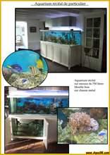 Aquarium eau de mer recifal20.jpg
