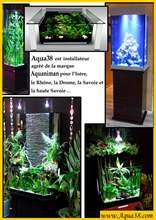 Aquarium eau douce Book Aquaniman.jpg