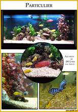 Aquarium eau douce book7.jpg