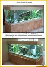 Aquarium eau douce eaudouce27.jpg