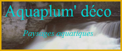 aquaplume