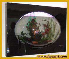 Modification d'aquariums